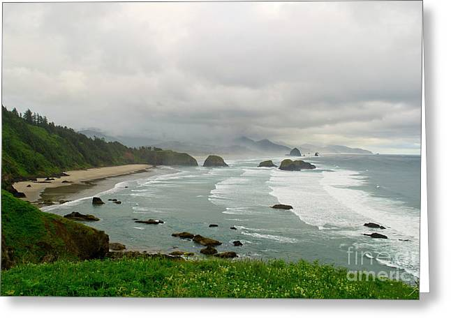 Greeting Card featuring the photograph Cannon Coast by Suzette Kallen
