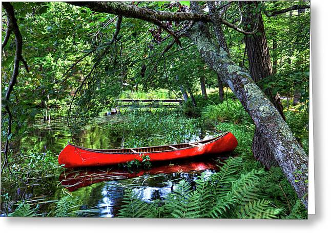 Canoe Under The Canopy Greeting Card