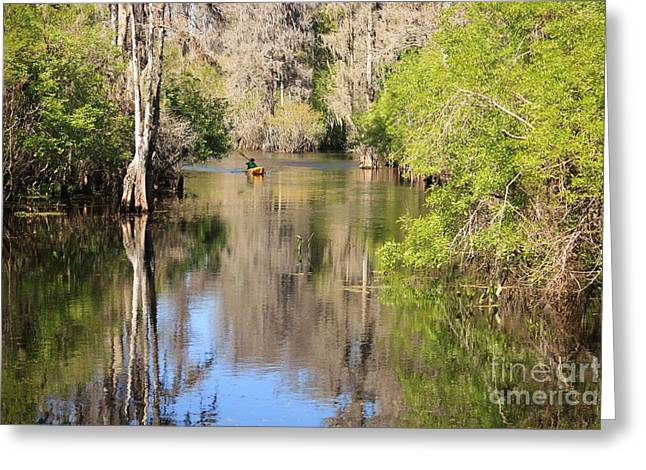 Canoeing On The Hillsborough River Greeting Card by Carol Groenen