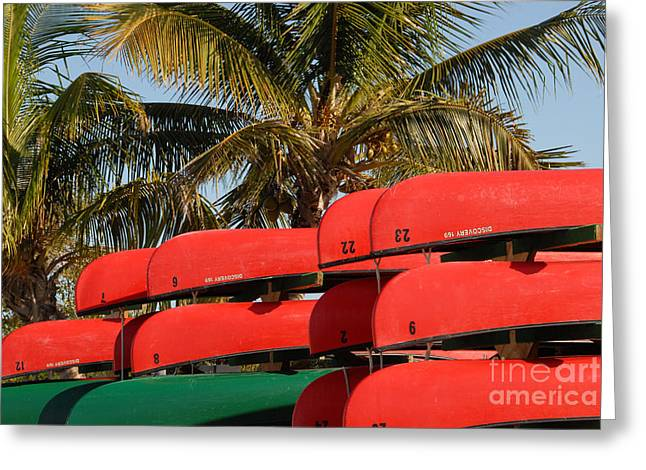 Canoe's At Flamingo Greeting Card by David Lee Thompson