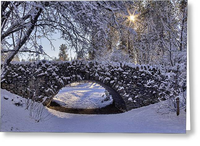 Cannon Hill Park Winter Greeting Card by Mark Kiver