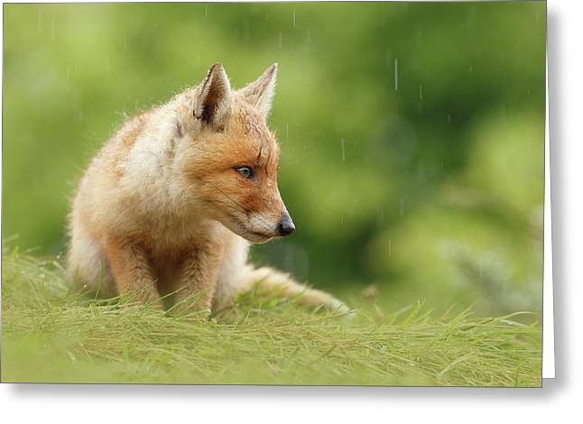 Can't Stand The Rain - Little Fox Kit Greeting Card