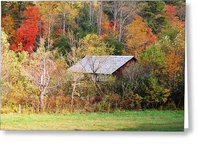 Cantilever Barn - Autumn Greeting Card by Faye Bryant