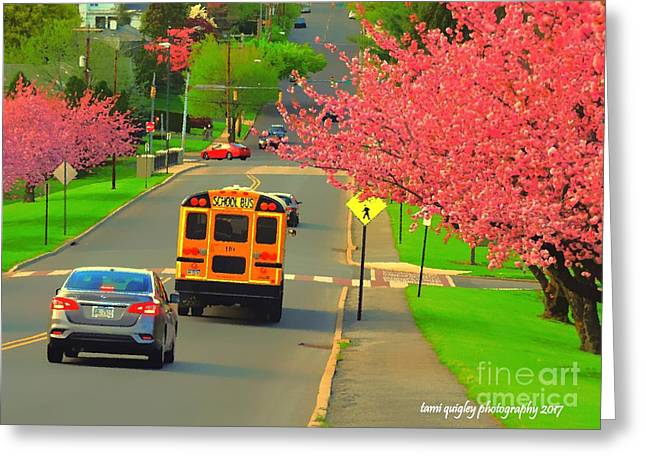 Canvassing Cherry Blossom Row Greeting Card by Tami Quigley