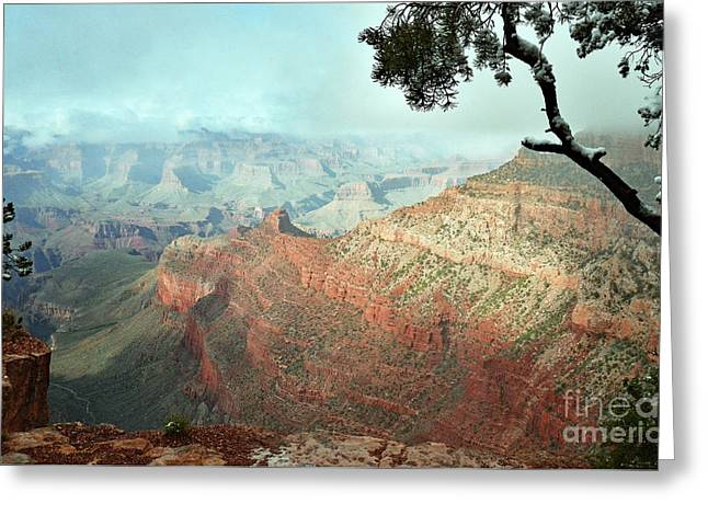 Canyon Captivation Greeting Card
