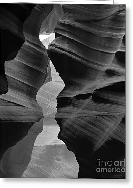 Canyon Curves In Black And White Antelope Canyon Greeting Card