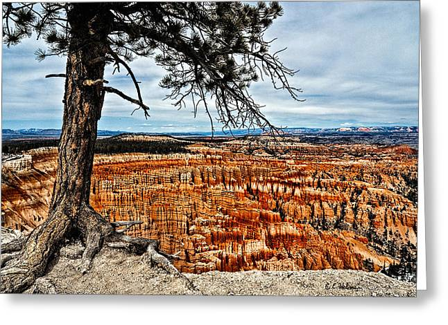 Canyon Overlook Greeting Card by Christopher Holmes