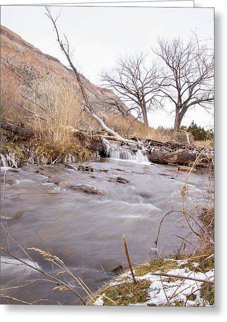 Canyon Stream Falls Greeting Card