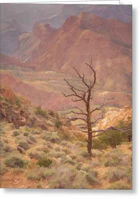 Canyon View And Tree, Desert View Lookout, Grand Canyon, Arizona Greeting Card by Eric Drumm