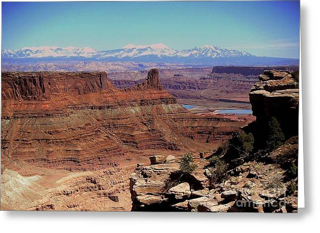 Canyonlands 5 Greeting Card by Marty Koch