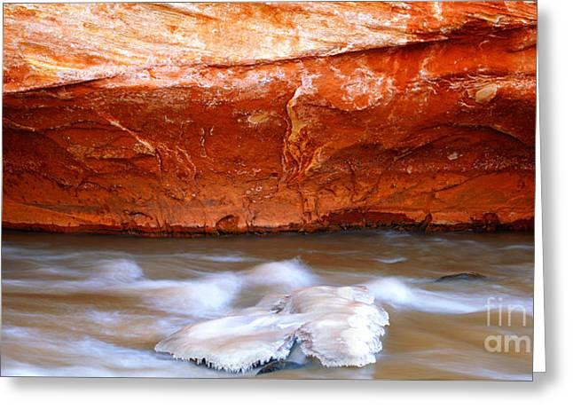Canyonlands Greeting Card by Christian Slanec