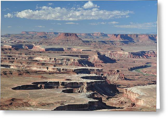 Canyonlands Greeting Card by Jeff Moose