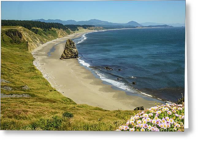 Cape Blanco On The Oregon Coast By Michael Tidwell Greeting Card
