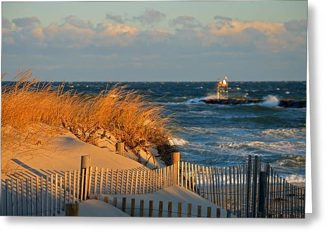 Cape Cod Bay - Dunes In Winter Greeting Card by Dianne Cowen