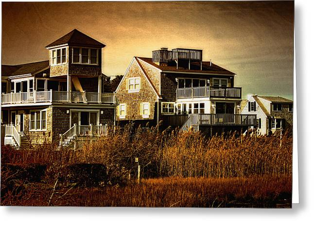 Cape Cod Gold Greeting Card by Gina Cormier