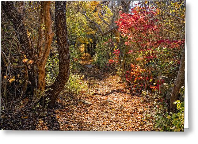 Cape Cod Path Greeting Card by Frank Winters