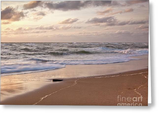 Greeting Card featuring the photograph Cape Cod Sunrise 1 by Susan Cole Kelly