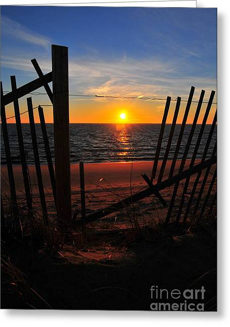 Cape Cod Sunset Greeting Card by Catherine Reusch Daley