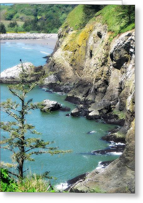 Cape D View Greeting Card by Arabella Marie