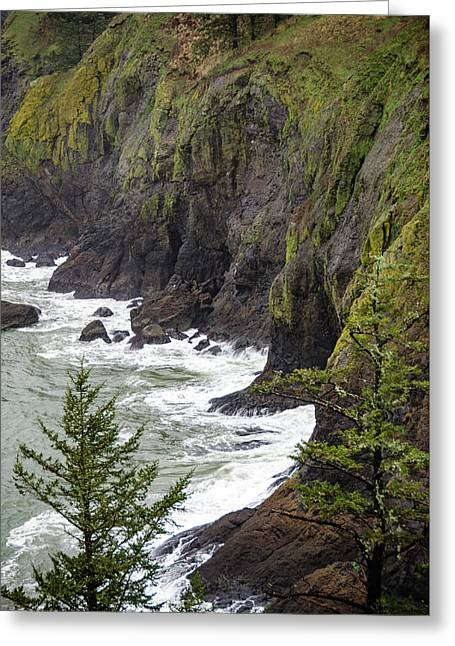 Cape Disappointment Greeting Card by Anthony Doudt