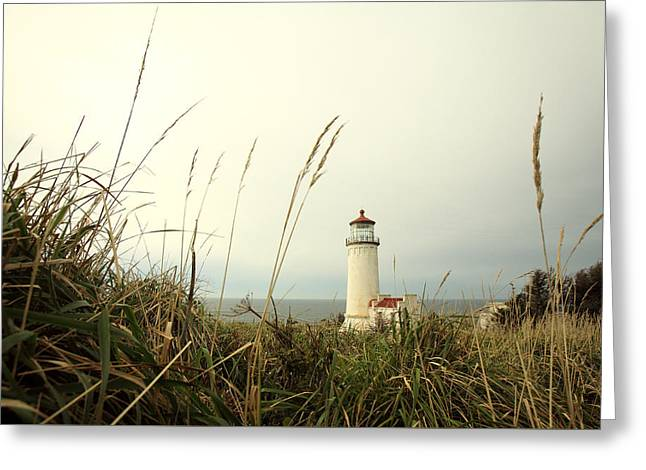 Cape Disappointment Greeting Card by Todd Klassy