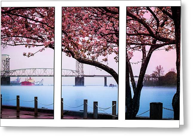 Cape Fear River Bridge Triptych Greeting Card by Karen Wiles
