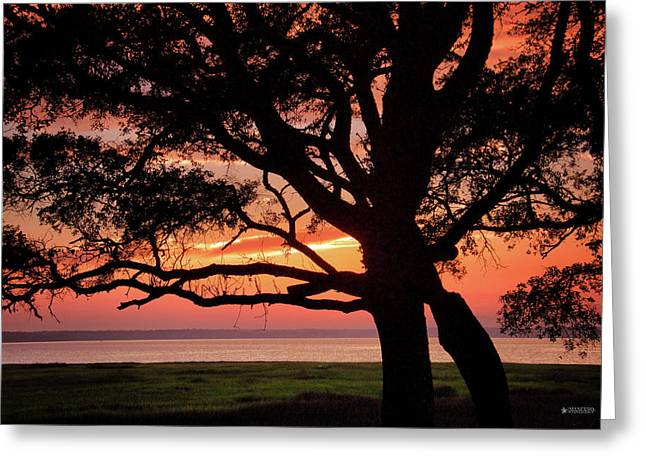 Cape Fear Sunset Overlook Greeting Card