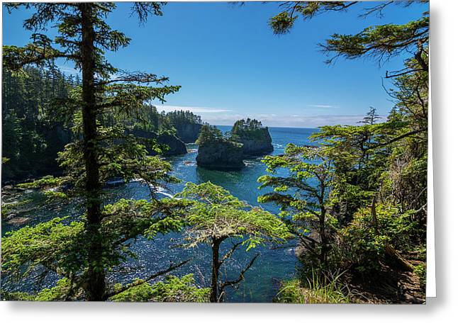 Cape Flattery 2 Greeting Card