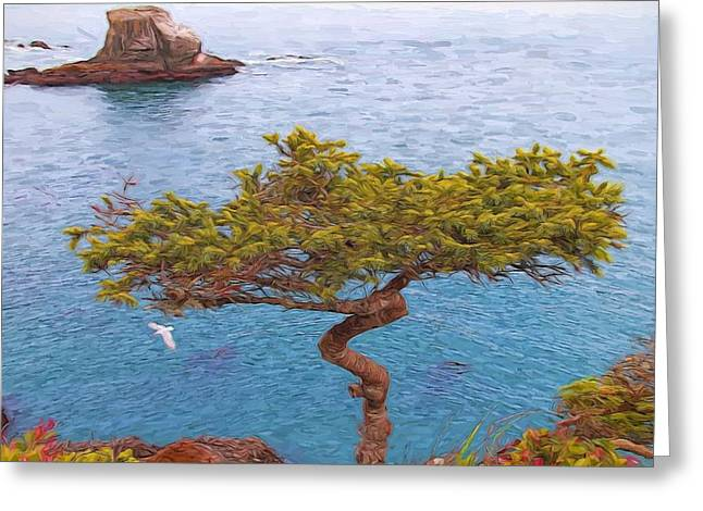 Cape Flattery Bonsai Greeting Card by Dan Sproul