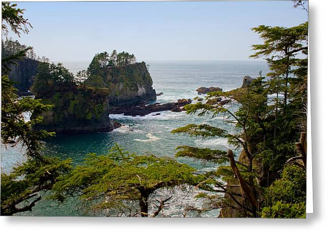 Cape Flattery Inlet Washington Greeting Card by Stacey Lynn Payne