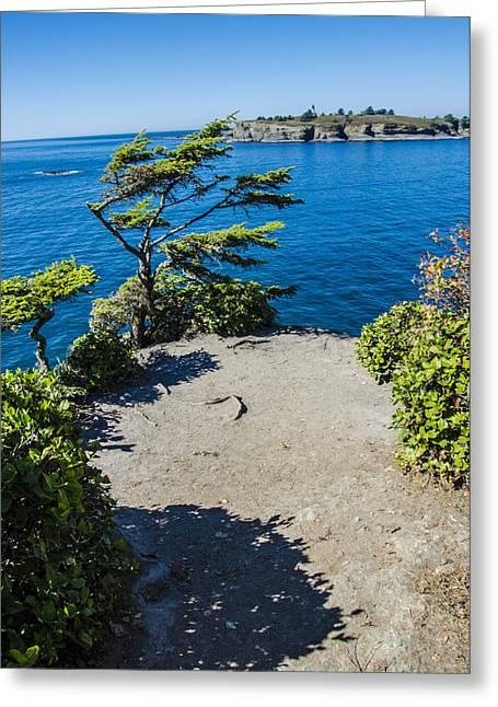 Cape Flattery Greeting Card by Pelo Blanco Photo