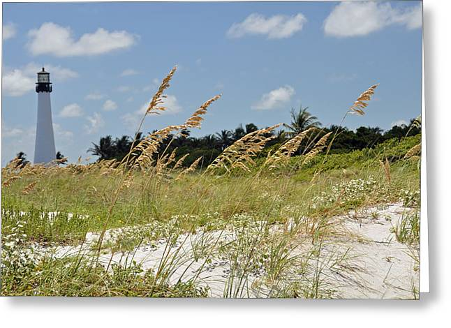 Cape Florida Greeting Card by Kelly Wade