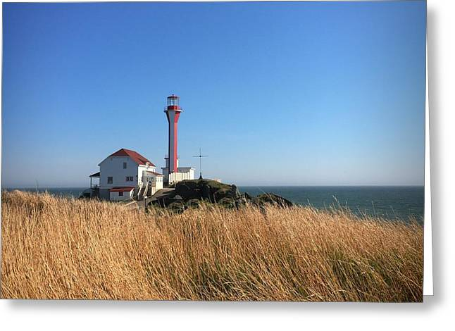 Cape Forchu Lighthouse 1 Greeting Card by Christine Sharp
