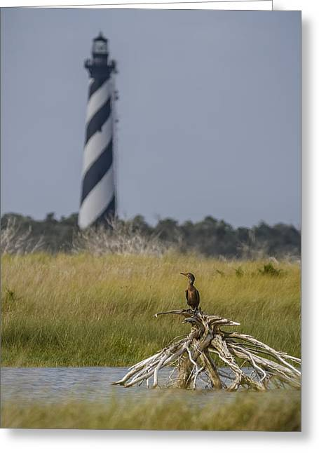 Cape Hatteras Greeting Card by Eduard Moldoveanu