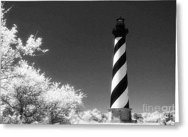 Cape Hatteras Lighthouse Greeting Card by Jeff Holbrook