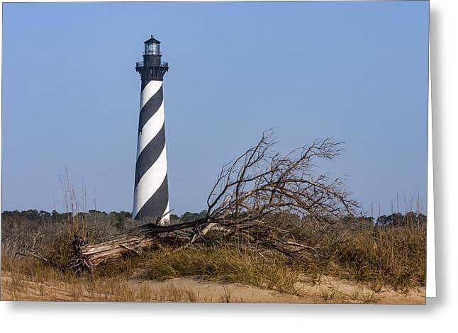 Cape Hatteras Lighthouse With Driftwood Greeting Card