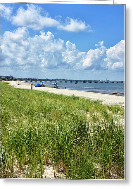Greeting Card featuring the photograph Cape Henlopen State Park by Brendan Reals