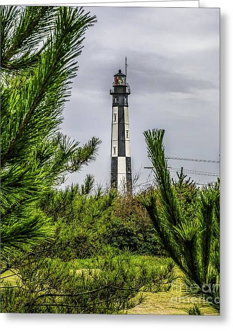 Cape Henry Light From The Dune Greeting Card