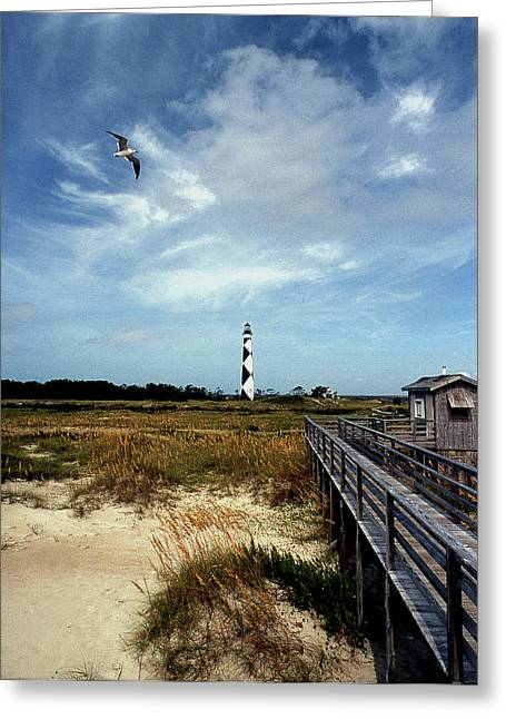 Cape Lookout Lighthouse Nc Greeting Card by Skip Willits