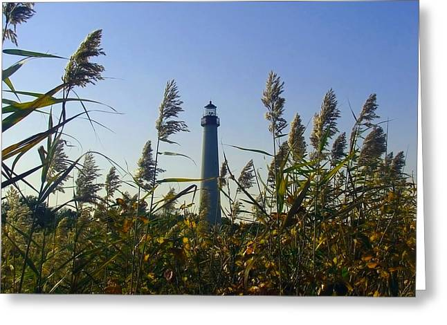 Cape May Light Autumn Greeting Card by Kevin  Sherf
