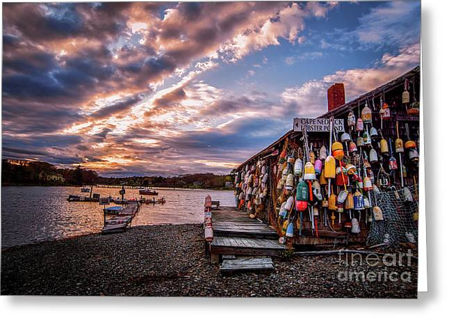 Cape Neddick Lobster Pound Greeting Card by Scott Thorp