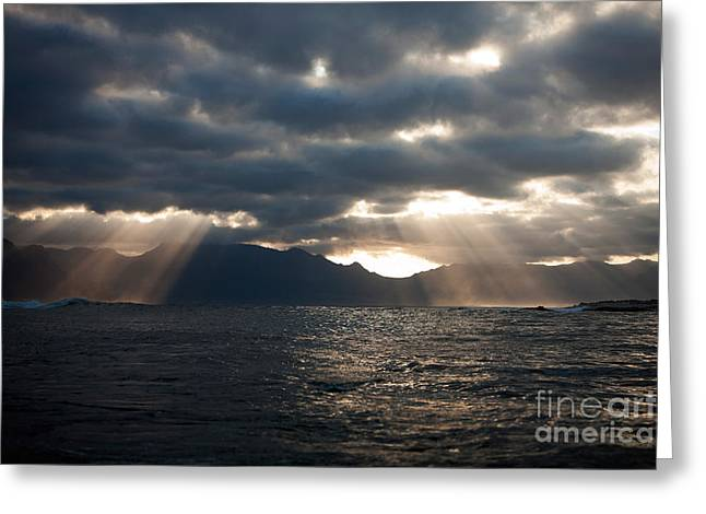 Cape Peninsula, False Bay In South Greeting Card by Gerard Lacz