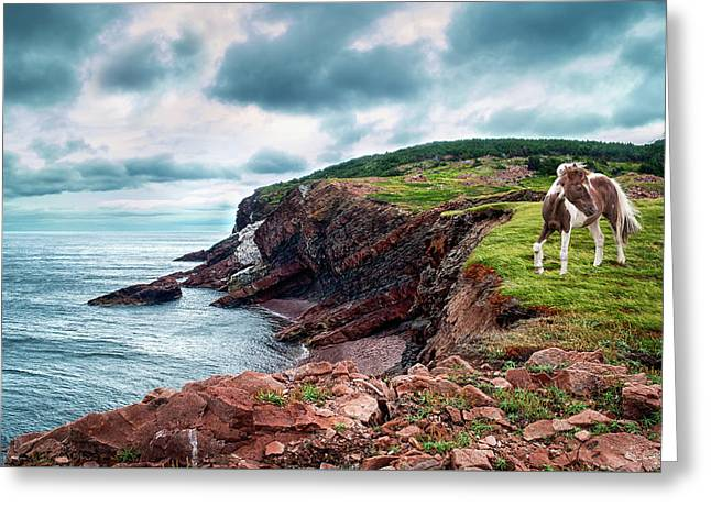 Cape St. Lawrence Greeting Card