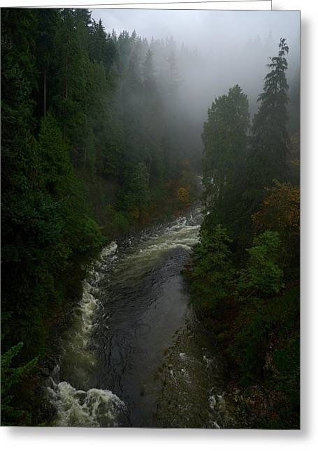 Greeting Card featuring the photograph Capilano Canyon by Steven Richman