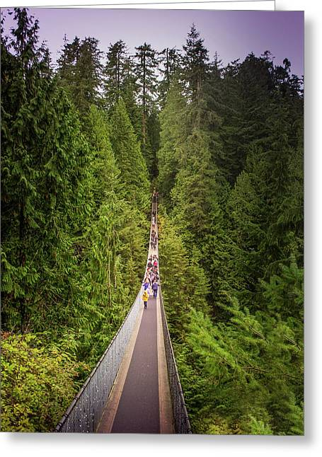 Capilano Suspension Bridge, North Vancouver, Canada Greeting Card by Art Spectrum