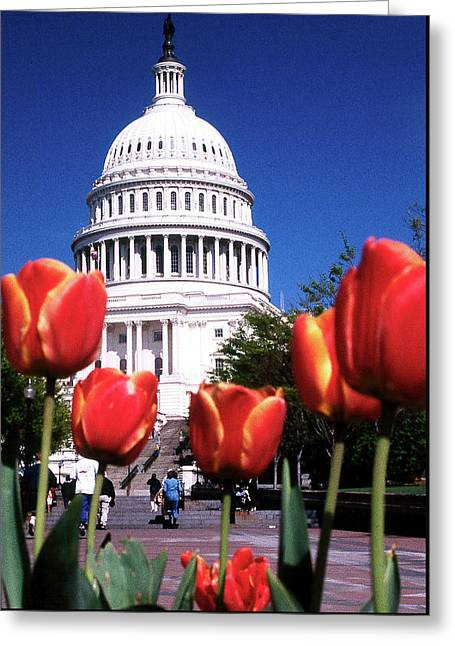 Capital Colors Greeting Card