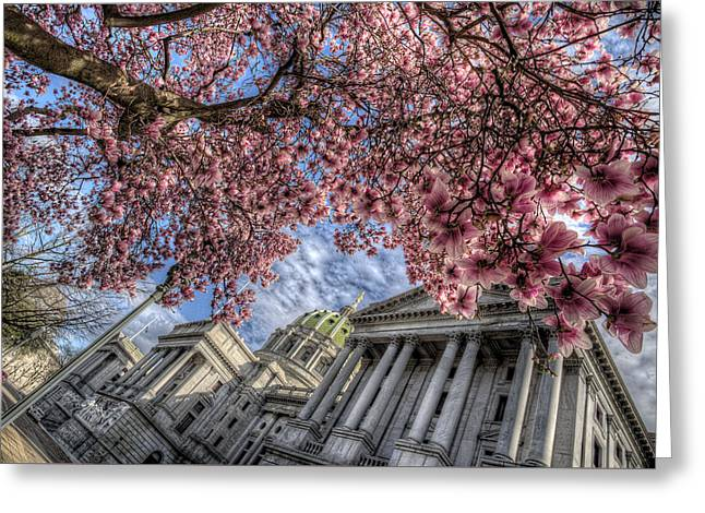 Capitol Blossoms Greeting Card