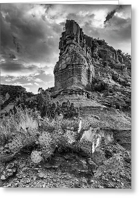 Greeting Card featuring the photograph Caprock And Cactus by Stephen Stookey