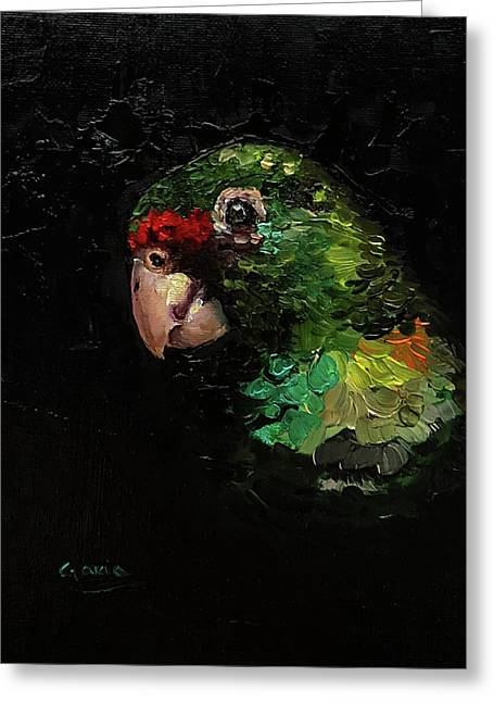 Captain The Parrot Greeting Card