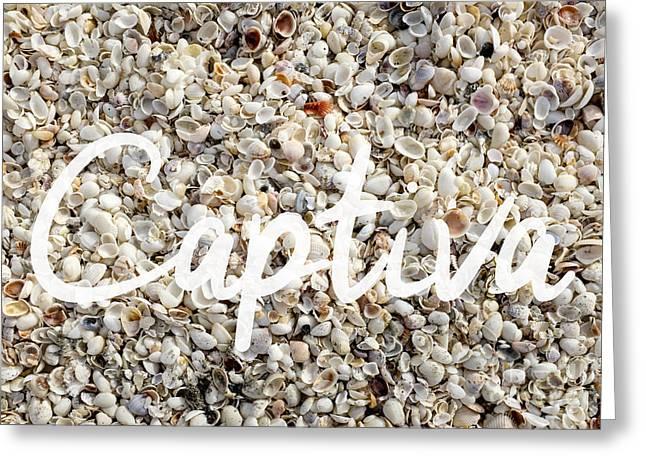 Captiva Island Seashell Greeting Card by Edward Fielding